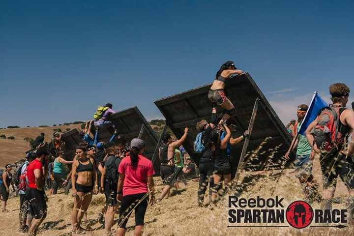 spartan race inverted wall