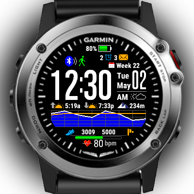 garmin fenix watch face 1